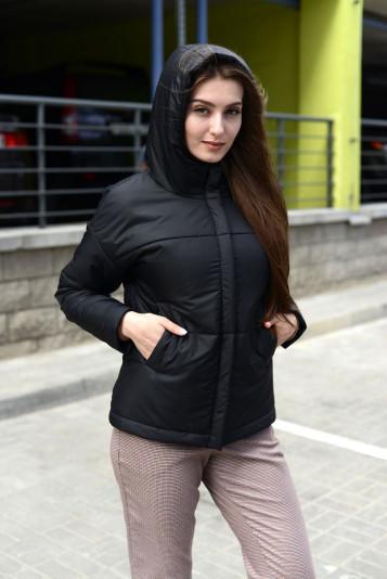 Куртка деми 93565 черная