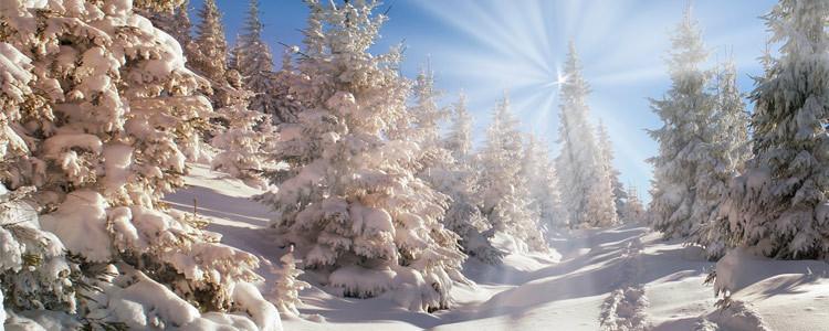 Выбираем одежду для уютной зимы
